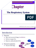 Chapter 28 Respiratory System