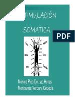 13_ESTIMULACIÓN_SOMÁTICA_Y_VESTIBULAR.pdf
