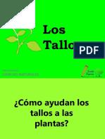 tiposdetallos-140310025144-phpapp02