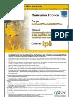 TEMA 5 ANAL AMB CONS ECOS IPE