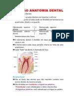 Resumão Anatomia Dental