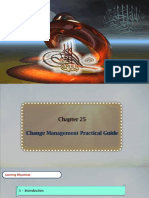 Change Management Practical Guide 1