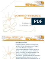 AnatomiayFisiologiaRenal