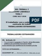 Dret Del Treball i, Rrll, Tema 7, Treballadors Estrangers