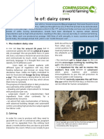 the-life-of-dairy-cows.pdf