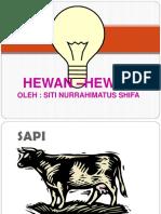 HEWAN –HEWAN