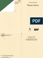 Cruce de vías-Solórzano.pdf