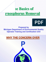 Wrd Ot Basics of Phosphorus Removal 445207 7