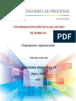 T16_Organigrama Organizacional