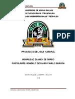 Procesos Del Gas Natural Gonzalo Fiorilo 17-02-18