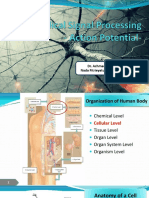 [2] Action Potential in Neural Tissue.pdf