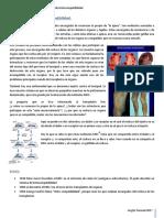 3. Sistema Mayor de Histocompatibilidad.pdf