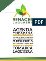 Agenda Ciudadana Final