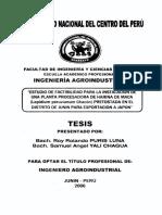 Estudio de La Factibilidad Para Instalacion de Una Planta de Harina de Maca