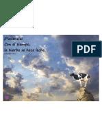 Ob Ba216a La Vache Rose Frase Del Dia 14 de j