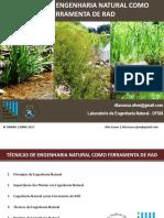 Tecnicas de Engenharia Natural Como Ferramenta de RAD_Rita Sousa_Laboratorio de Engenharia Natural_UFSM