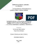 Determinacion de La Capacidad de Adsorcion de Mp en El Aire en Una Especie Arborea en Cieneguilla 2015