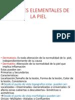 Medicina III - Dermatologia INTRODUCCION