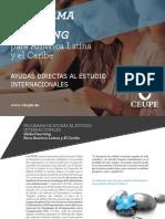Informacion Becas Maestrias Espana