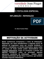 CONF 3 INFLAMACAO.ppt