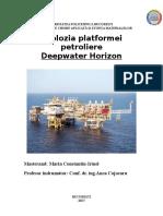 Explozia Platformei Petroliere Deep Horizon Marin Irinel BUN