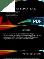 FACTORES SOMATICOS
