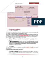 267221187-Literatura-Universal-Primeras-Literaturas.docx