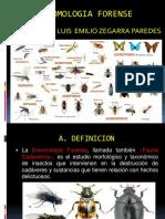 ENTOMOLOGIA FORENSE 2017