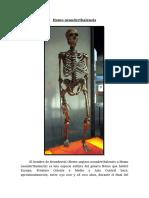 Homo neanderthalensis.docx