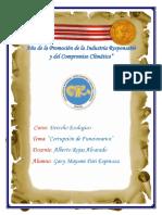 TRABAJO PARI CORRUPCION DE FUNCIONARIOS.docx