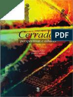 Livro_CERRADOS_perspectivas_e_olhares.pdf