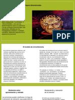 Exp. de Proceso Cognocistivo