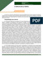 DIAGNOSTICO - CLINICA - Ictericia canina.pdf
