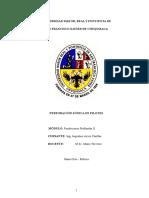 Monografia Fundaciones Profundas II