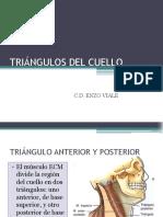 CLASE 5 TRIANGULOS DEL CUELLO.pptx