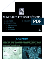 IV. Minerales Petrogenéticos 1