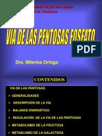 Via de Las Pentosas I