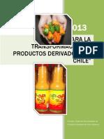 Manual Industrializacion Chile