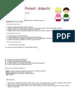Proiect Baltagul 888888 (3)