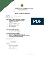 Estructura Informe Final Tesis