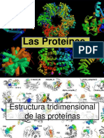 Clase 5 Proteínas t