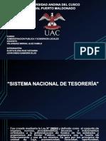 Sistema Nacional de Tesoreria Exposicion