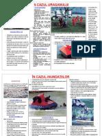 0_protecttia_civila1.doc