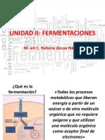 UNIDAD II_fermentaciones.pdf