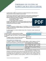 ITINERARIO-CULTIVO-REMOLACHA-AZUCARERA-2014.docx