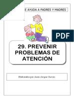 29 Prevenir Problemas Atencion