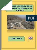 DATOS HIDROLÓGICOS DE UNA CUENCA EN PEDREGAL CHOSICA
