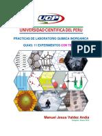 UCP Guias Quimica Inorganica.pdf