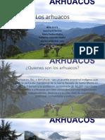 Arhuacos Exposicion de Español