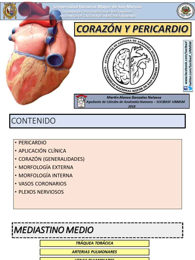 clase-27-Corazón-y-Pericardio.pdf